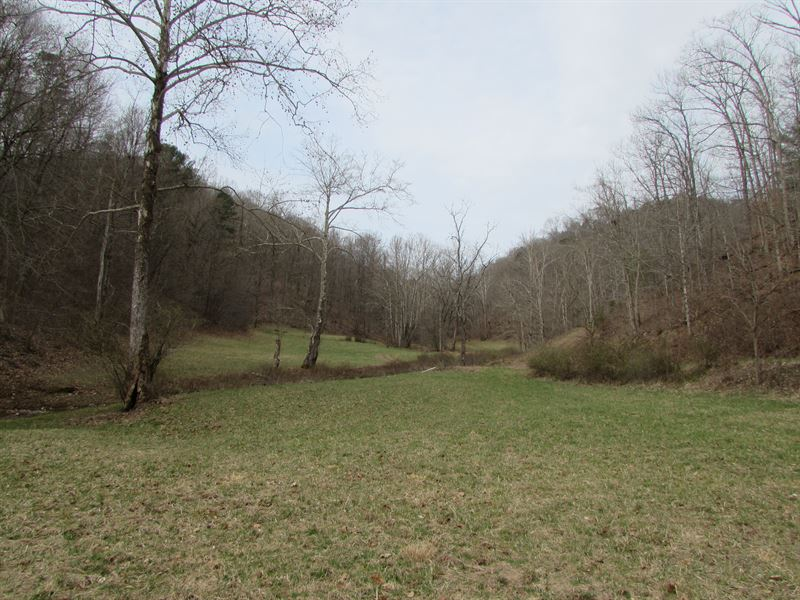 169.52 Acres Home Site Or Retreat : Smithville : Ritchie County : West Virginia