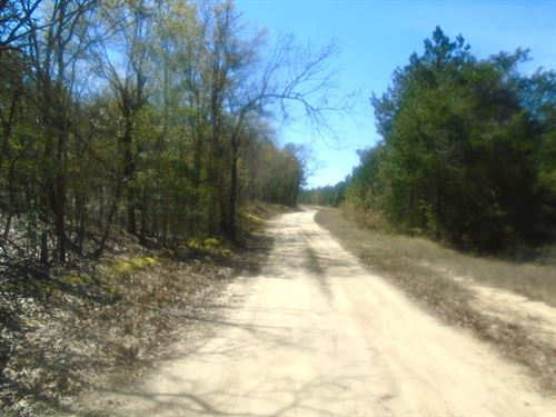 Chesterfield County Sc Acreage : Ruby : Chesterfield County : South Carolina
