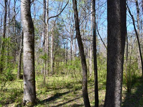 Enoree River Tract : Kilgore : Spartanburg County : South Carolina