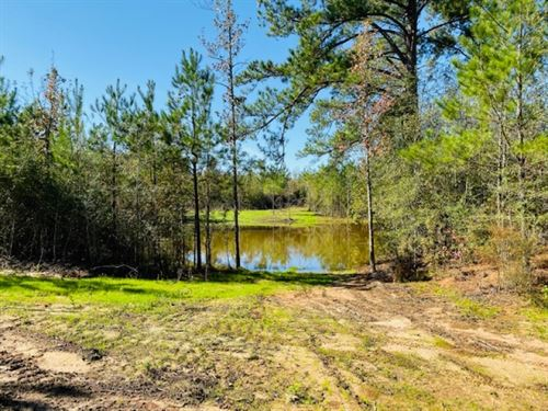 58 Acres With Nice Pond : Tylertown : Walthall County : Mississippi