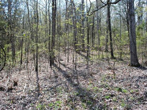 Reduced Lot 14 0.53 Acres : Heber Springs : Cleburne County : Arkansas