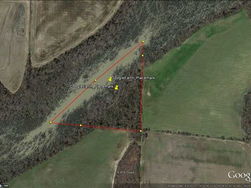 12Ac Flooded Timber, Excellent Duc : Swifton : Jackson County : Arkansas
