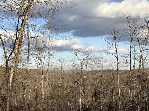 Morgan County Missouri 35 Acre Hun : Stover : Morgan County : Missouri