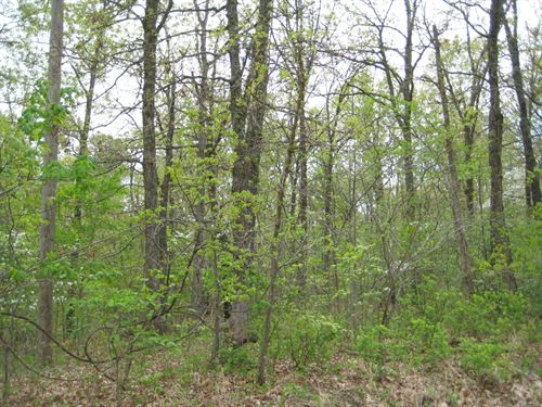 Land Hunting,Camping, Building : Versailles : Morgan County : Missouri
