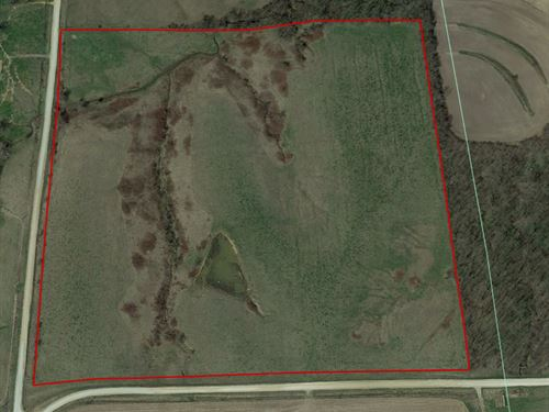 40 Acres Pasture Hay Davis Co, IA : Bloomfield : Davis County : Iowa