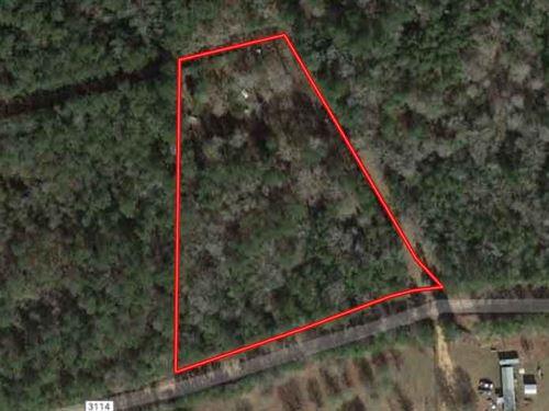 Unrestricted Acreage + Well & Sewer : Deweyville : Newton County : Texas