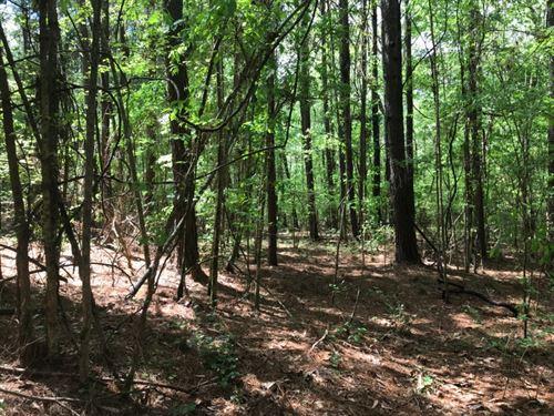 5 Acres in Brandon, Mississippi : Brandon : Rankin County : Mississippi