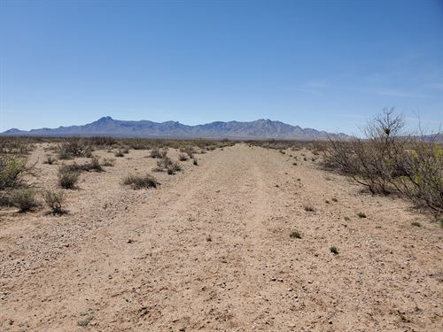 Land For Sal in Deming NM : Deming : Luna County : New Mexico