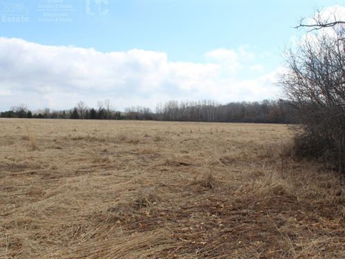 Green Lake County Land For Sale : Princeton : Green Lake County : Wisconsin