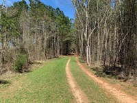 D'arbonne Tract, Union Parish, 108 : Farmerville : Union Parish : Louisiana