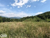 150 Acres of Mountain Forests, Fiel : Hendersonville : Henderson County : North Carolina