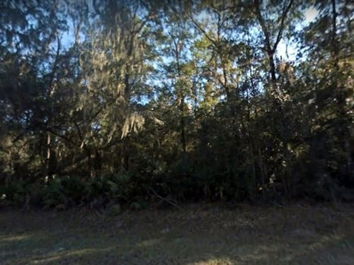 Levy County, Fl $21,000 : Chiefland : Levy County : Florida