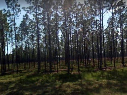 Gulf County, Fl $30,000 : Wewahitchka : Gulf County : Florida