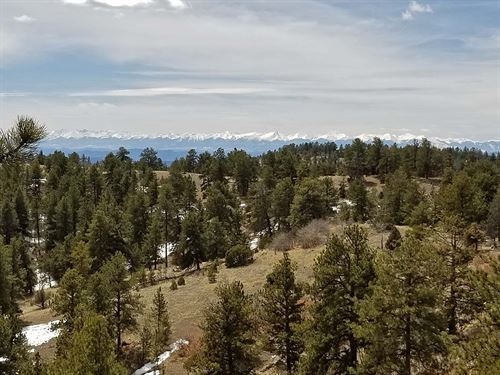4.5 Acres Surrounded By Government : Cripple Creek : Teller County : Colorado