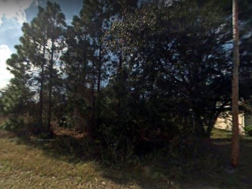 Lee County, Fl $12,000 Neg : Lehigh Acres : Lee County : Florida
