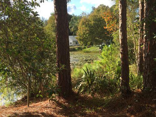 Lake County, Fl $34,000 Neg : Paisley : Lake County : Florida