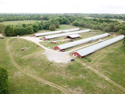 M&M Breeder Farm, Four House Farm : Luverne : Crenshaw County : Alabama