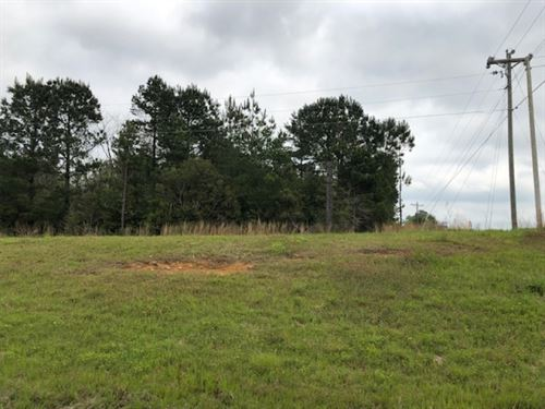 18 Acres On Hwy 84 / Durr Ln : Prentiss : Jefferson Davis County : Mississippi