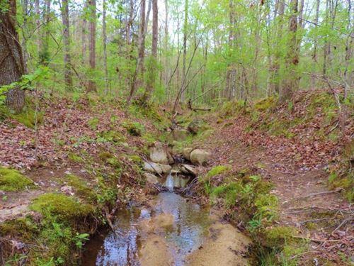 Hardwood Hunting Tract : Crawfordville : Taliaferro County : Georgia