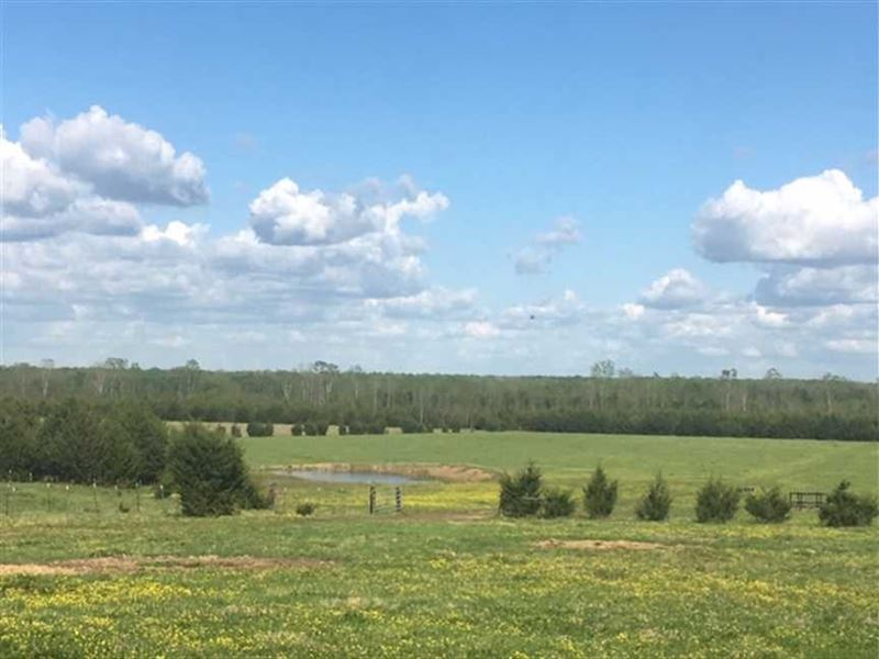 320 ac Working Cattle Ranch : Starkville : Oktibbeha County : Mississippi