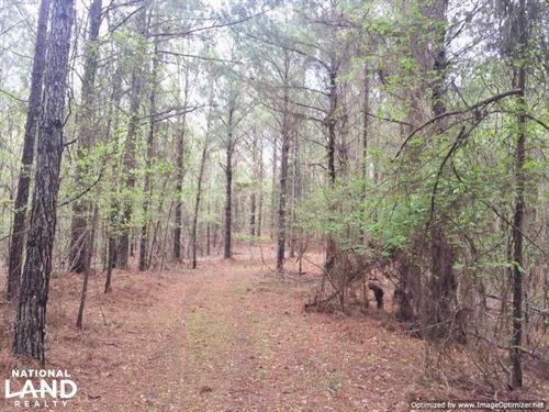 Mixed Timber Hunting Property : Kosciusko : Attala County : Mississippi