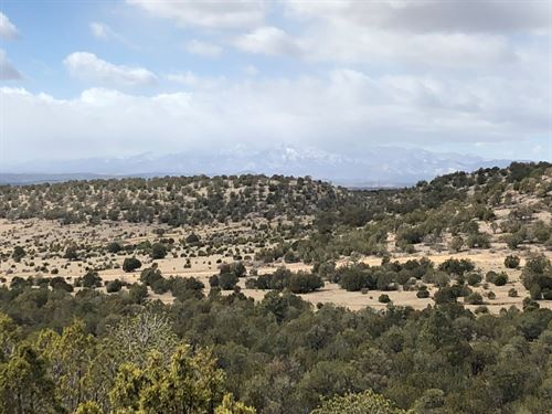 Beautiful 80 AC Recreation/Ranch : Capitan : Lincoln County : New Mexico