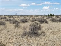 NM Residential Lot Torrance County : Moriarty : Torrance County : New Mexico