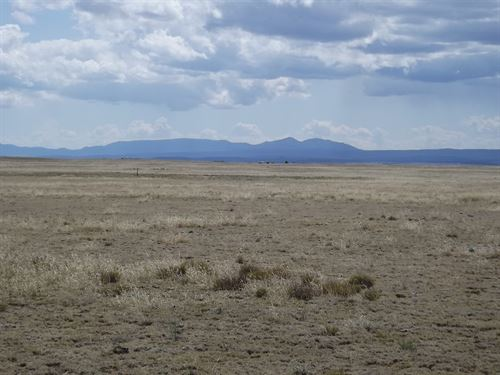 1,040 Acres Pasture Grassland : Moriarty : Torrance County : New Mexico