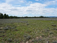 9.86 Acre Hunting Land To Build You : Bly : Klamath County : Oregon