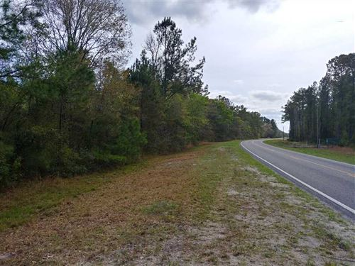 20 Acres in Brantley County, GA : Waynesville : Brantley County : Georgia