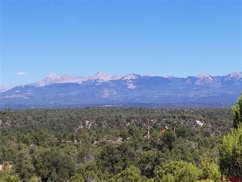 Land For Sale Near Mancos Colorado : Mancos : Montezuma County : Colorado