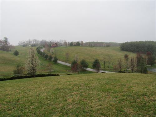 Building Lot Bear Creek, 1.02 Ac : Sparta : Alleghany County : North Carolina