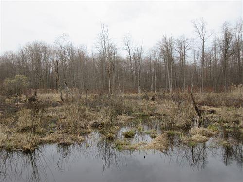 Ashtabula Ohio Hunting Land : Conneaut : Ashtabula County : Ohio