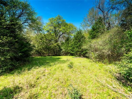 30.9 Acre Half Wooded Tract : Madisonville : Madison County : Texas