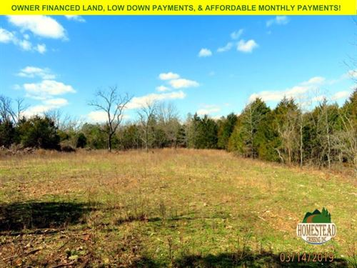 Natural Land, Drive & Clearing : Drury : Ozark County : Missouri