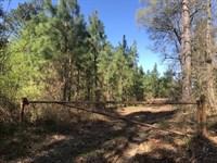 Boggan Tract : Polkton : Anson County : North Carolina