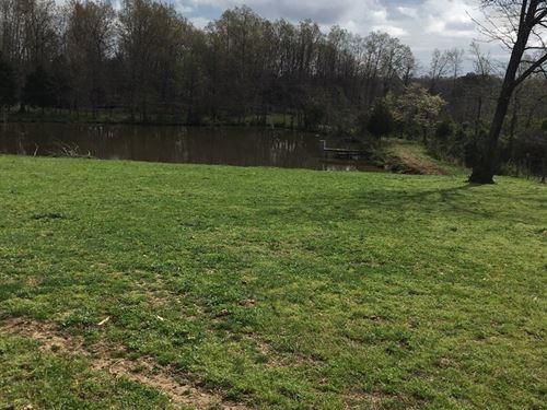 Beautiful Farm/Hunting Property : Pocahontas : Arkansas County : Arkansas