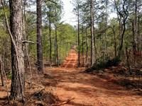 Small Hunting Property : Thomaston : Upson County : Georgia