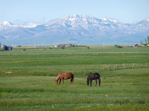Where The Prairie Meets The Rockies : Fairfield : Teton County : Montana