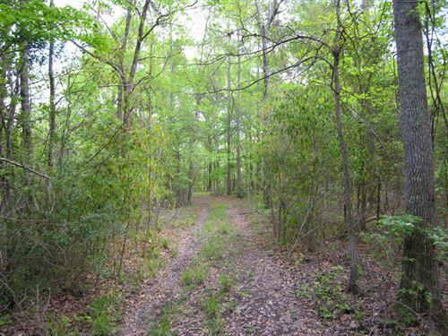 Reduced 92.9+- Acres Wooded, Creek : Hephzibah : Richmond County : Georgia