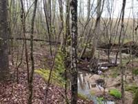 Baccer Hills Lot 2 : Gretna : Pittsylvania County : Virginia