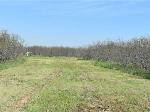 27 Acres For Residential Use in th : Wichita Falls : Archer County : Texas