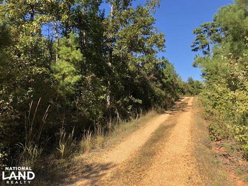 Hamilton Hunting Tract : Hamilton : Marion County : Alabama