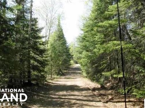 14 20 Acres Hunting, Recreational : Finland : Lake County : Minnesota