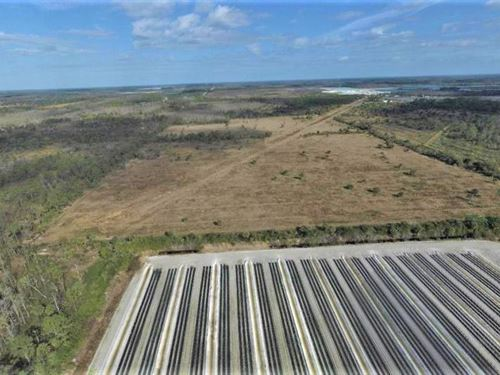 Estero Swfl Farmland Investment Opp : Estero : Lee County : Florida