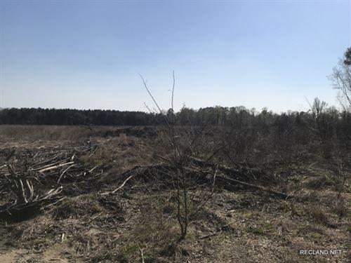 26.9 Ac, Re-Planted Timberland : Georgetown : La Salle Parish : Louisiana