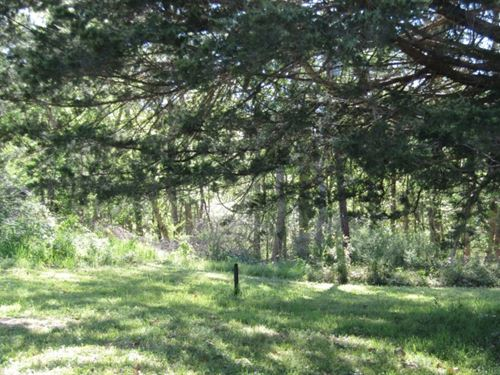 1 Acre With A Cabin In Jefferson CO : Fayette : Jefferson County : Mississippi