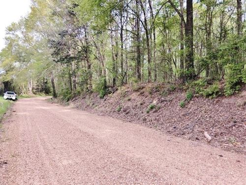 5 Acres Land For Sale Roxie, Fr : Roxie : Franklin County : Mississippi