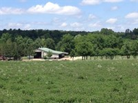 Country Living at It's Finest : Mount Vernon : Lawrence County : Missouri