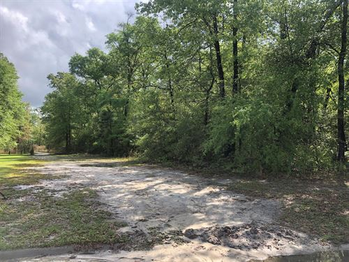 Beautiful Lot Ramsey Landing : Rincon : Effingham County : Georgia